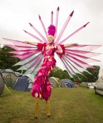 výstava festivalu Glastonbury
