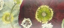 1. Květinový jarmark