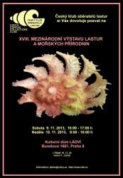 17. mezinárodní prodejní výstava lastur Praha 2013