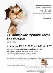 21. umísťovací výstava koček bez domova