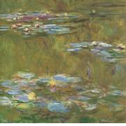 Claude Monet - lekniny