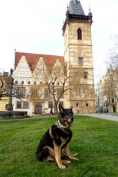 Egon Ort Bohemia