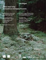 Jan Bigas - Kdesi mezi lesy