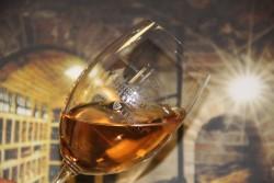 Lednické Oranžové víno