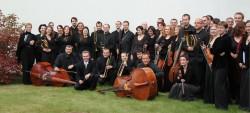 Musica Florea 2014