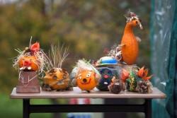 Podzim v trojské botanické zahradě bude hýřit barvami
