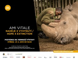 Výstava Ami Vitale