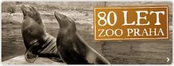 zoo praha slavi 80